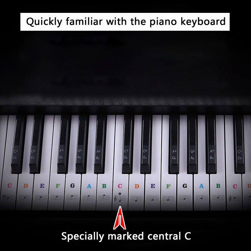 Piano-Stickers-For-37-49-54-61-88-Key-Keyboards-Transparent-And-Removable-New thumbnail 19